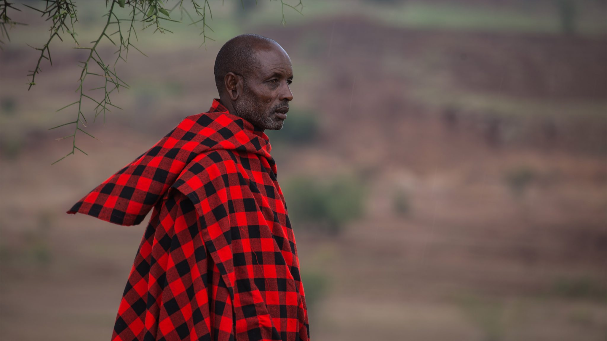 This photograph shows a Maasai pastoralist standing for a portrait in the early afternoon – just as the daily rains begin to fall around 3pm. He works with his cattle in the fields behind him, which show deep trenches falling away from the land caused by soil erosion. 'Five years has shown extreme changes' he informs me sadly.