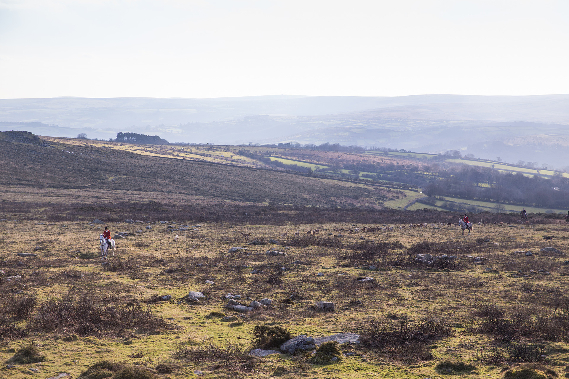 The Dartmoor Hunt in full chase across the rocky outcrops.