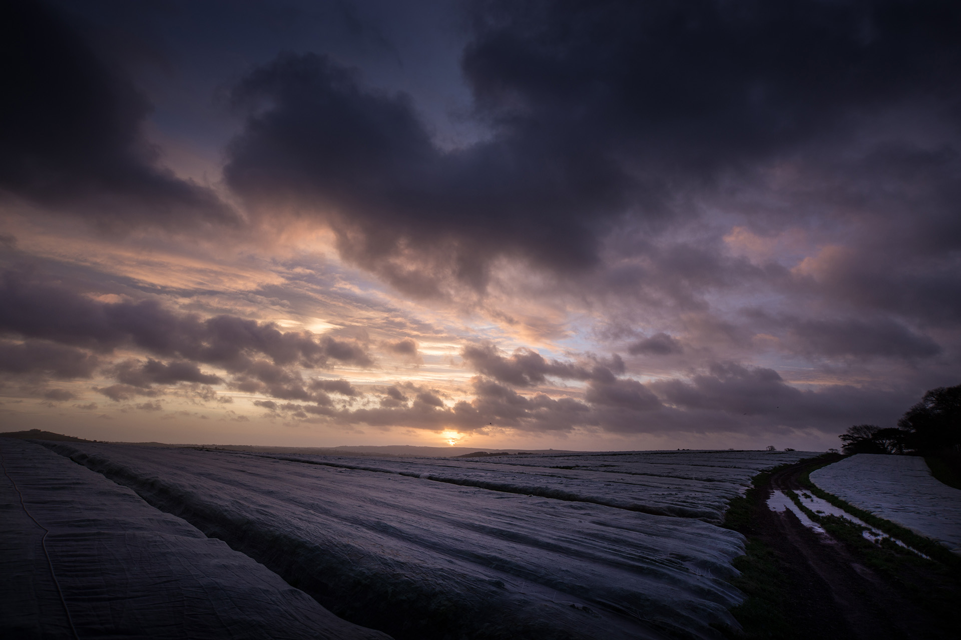 Agricultural fleece is used to protect crops from winter frost. But here is appearance looks more like waves on the sea, with brooding dark clouds behind.
