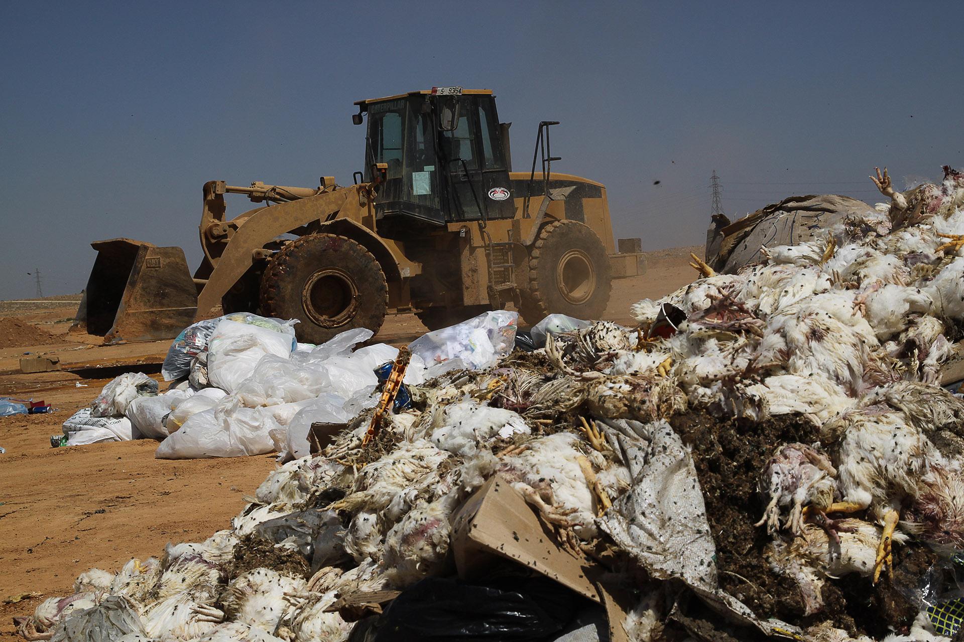 Carey Marks Photography, Al Huseyniyat landfill, Al Huseyniyat, Refugees, Waste Recovery, Waste, Syrian refugees, Palestian refugees, UNHCR, recycling, bulldozer, Caterpillar