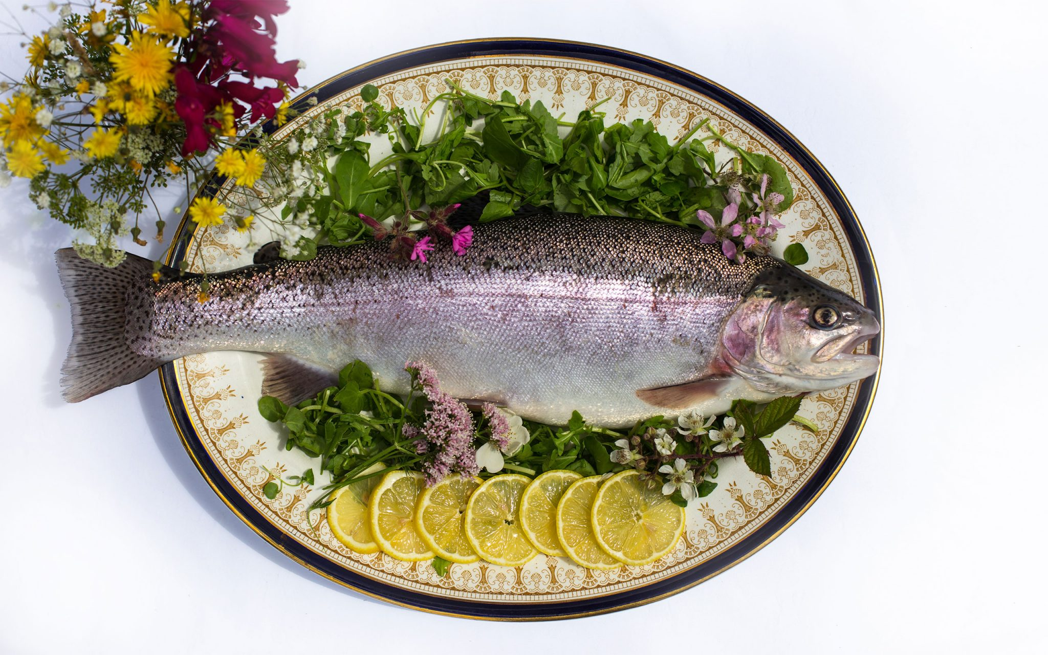 Portraits, food photography, Rainbow Valley Trout Farm, hatchery, smoke-house, fish, foodies, Exmoor, Food Producers, Rainbow trout, Carey Marks Photography