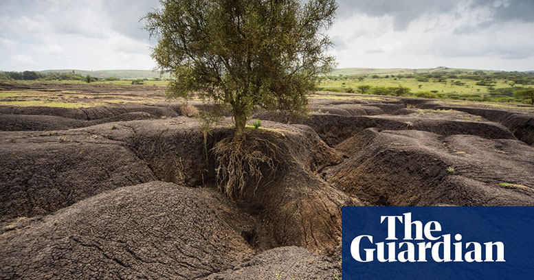 Soil erosion in Tanzania in pictures - The guardian Article Carey Marks